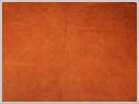 Cow hide tanned using tannin